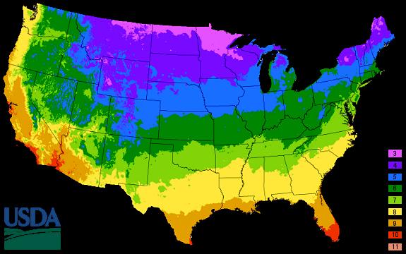 Us Hardiness Zones Map 2018 USDA Plant Hardiness Zones – Appeldoorn